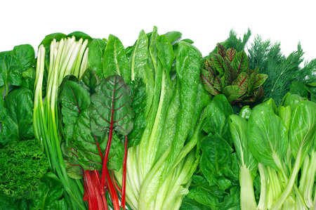Various green leafy vegetables in row on white background. Top view point.