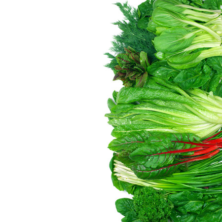 green leafy vegetables: Various green leafy vegetables in row on white background. Top view point.