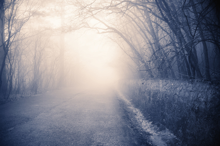 split road: Foggy landscape with road stretches into distance and sunlight. Filtered split toned image. Soft focus.