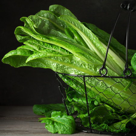 romaine: Fresh romaine lettuce and spinach savoy leaves in wire basket on dark wooden table.