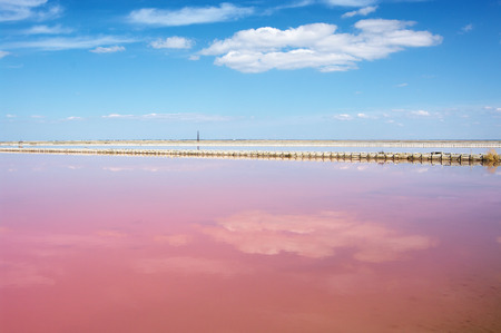 Pink salt lake Sasyk-Sivash with reflection of clouds and salt production. Crimea. Stock Photo