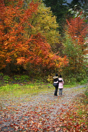 Mother and daughter walking in colorful autumn forest at rainy weather.
