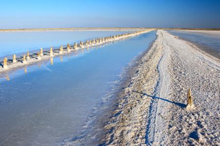 Abandoned old bay salt works with pink salt and weathered wood pegs. Sasyk-Sivash lake, Crimea.