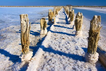 crystallize: Abandoned old bay salt works with pink salt and weathered wood pegs. Sasyk-Sivash lake, Crimea.