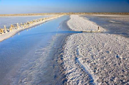 放棄された古い湾の塩はピンクソルト (岩塩) と連携し、木製のペグを風化します。Sasyk Sivash 湖、クリミア自治共和国。