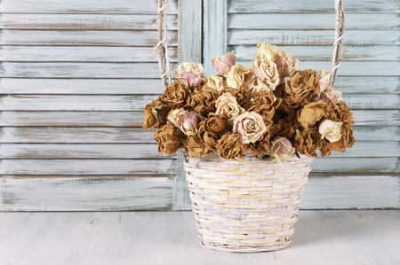 Dried roses in white wicker basket against wooden blinds. Shabby chic interior decor.