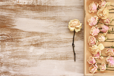 fading: Drying of delicate pink roses lying in wooden tray on rustic wood background. Top view point.