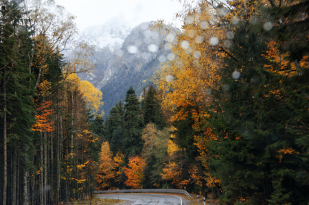 road autumnal: View on road in autumnal forest through windscreen of moving car. Rainy weather, raindrops on windshield.
