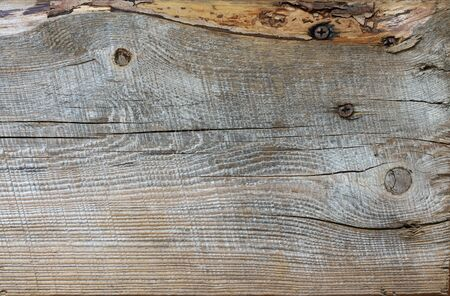 Reclaimed: Extreme distressed molded weathered wood with rusted screws texture.