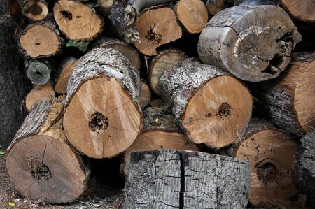 sawn: Stack of sawn logs close-up. Stock Photo