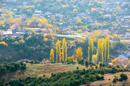 Álamos otoñales soleados en la cima de la colina contra la aldea de abajo.