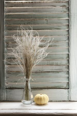 Bunch of feather grass in glass vase and pumpkin on windowsill against vintage wooden shutters.