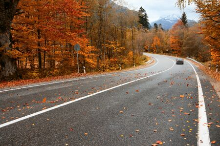 Asphalt road with fallen leaves and car in autumn forest. Focus on foreground. 免版税图像