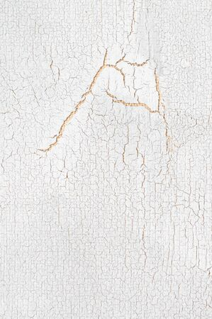 White painted and cracked wood texture as background.