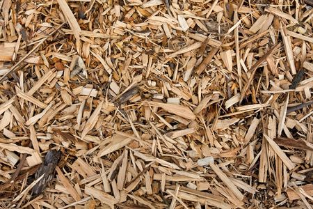 monochromatic background of wooden and bark chips mulch