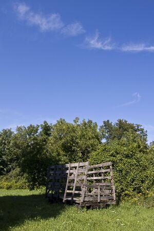 old wood farm wagon: old hay wagon at farm garden and blue sky Stock Photo