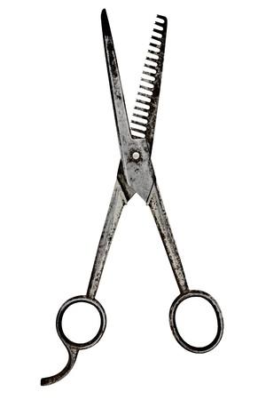 barber scissors: vintage barber scissors isolated over white background