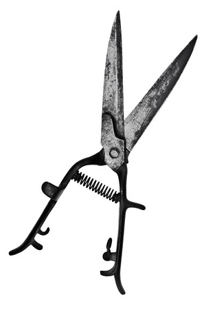 vintage pitted hedge shears over white background