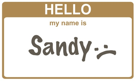 flood area sign: hello my name is sandy  sticker