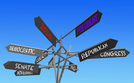 rightwing: election 2016 choice conceptual post, 3D rendering