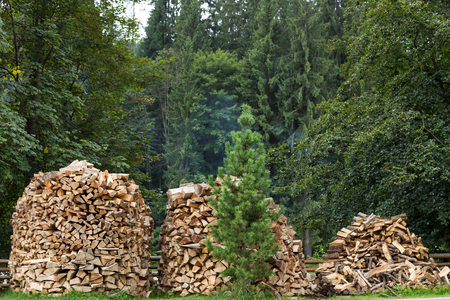sawn: Chopped firewood for home heating in the Carpathians. Ukraine.