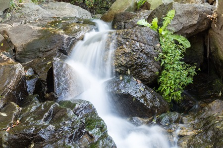 rages: River is flowing down through rocks. Grass growing in the rock.