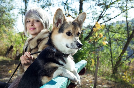 belongs: The girl with dog are sitting on bench in autumn park. The dog belongs to the breed of Welsh Corgi.