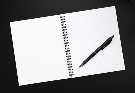 hoja en blanco: Hoja en blanco del cuaderno