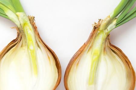 tilt views: Onions, cut in half Stock Photo