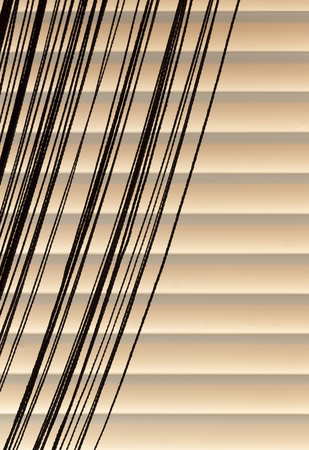 blinds: Beige blinds and curtains rope