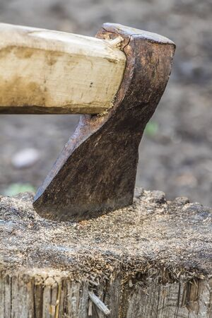 yard stick: The ax stuck in a tree stump in the backyard close-up