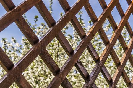 summerhouse: A fragment of a wooden summerhouse with a garden view