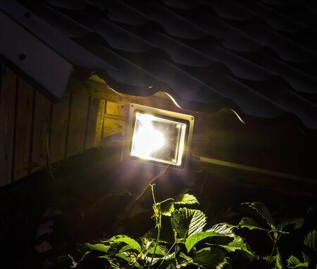 Ogrodowy DOWODZONY oświetlenie reflektor iluminujący przy nocy zbliżeniem Zdjęcie Seryjne