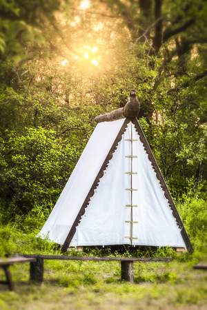 The white tent stands in the forest on the background of sunset. Effect tilt-shift. Stock Photo