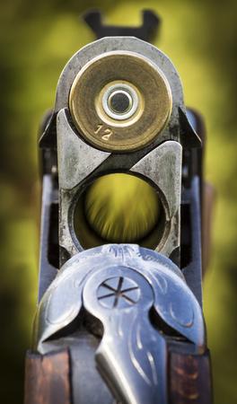 fusil de chasse: Obturateur fusil de chasse gros plan sur un fond de la nature.