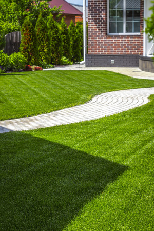 Beautiful evenly trimmed lawn in the backyard of a private house. Stock Photo