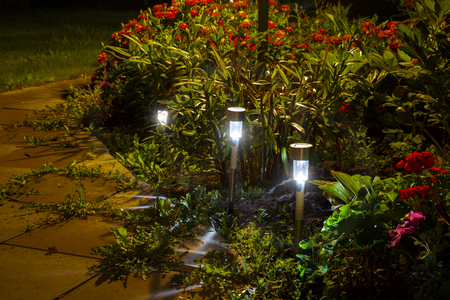 Night garden LED lights with a blue glow.