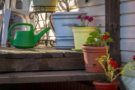Flowers on the veranda of a private house. Standard-Bild