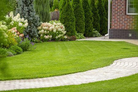 Świeżo skoszona trawa na podwórku prywatnego domu.