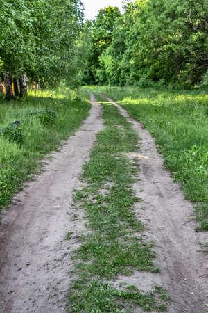 Rural winding dirt track of a road closeup. 免版税图像
