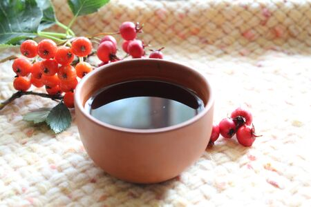 Autumn warm cup of tea with berries