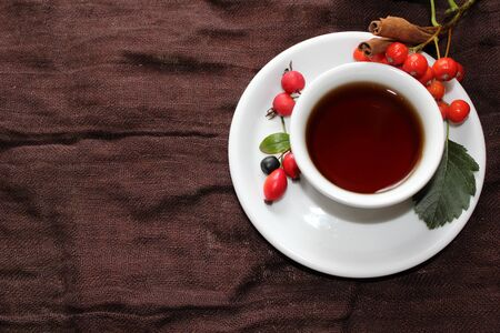 Autumn  cup of tea with different berries and cinnamon