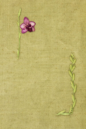 Dry plants on green coarse cloth. Purchases for scrapbooking. photo