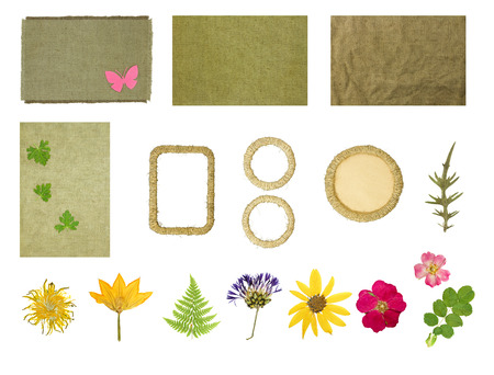 Set elements for scrapbooking. Frames braided jute thread. Dried pressed flowers. Objects isolated on white background. 스톡 콘텐츠