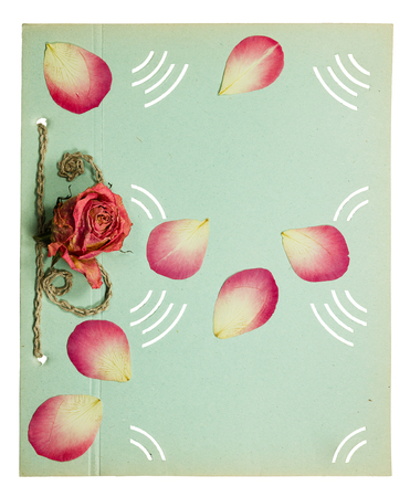 old album: Page from an old album pistachio color. Decorated flower and rose petals. Isolated on white background.