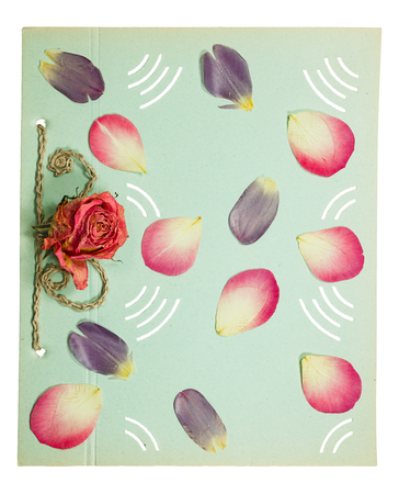 old album: Page from an old album pistachio color. Decorated flower roses, petals tulip and rose. Isolated on white background. Stock Photo