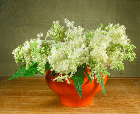 Meadowsweet. Still life. Bouquet of meadow flowers in orange pots standing on a wooden table. Rustic style. 스톡 콘텐츠