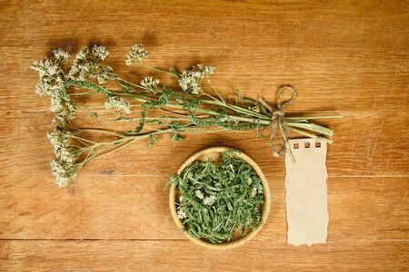 yarrow: Yarrow.Dried herbs for use in alternative medicine.Herbal medicine, phytotherapy medicinal herbs.For preparation of infusions, decoctions, tinctures, powders, ointments, tea.Background green cloth