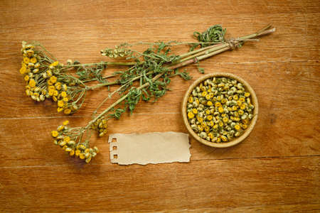 phytotherapy: Tansy.Dried herbs for use in alternative medicine.Herbal medicine, phytotherapy medicinal herbs.For preparation of infusions, decoctions, tinctures, powders, ointments, tea.Background green cloth Stock Photo