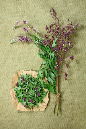 phytotherapy: Fireweed.Dried herbs for use in alternative medicine.Herbal medicine, phytotherapy medicinal herbs.For preparation of infusions, decoctions, tinctures, powders, ointments, tea.Background green cloth Stock Photo